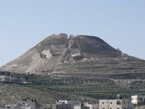 3. Palestine (5)