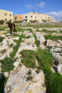 6.3. Rabat Ruts (1)