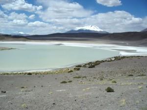 South America Website Photos (57)