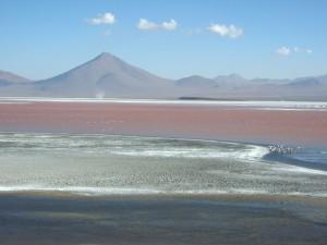 South America Website Photos (58)