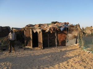 West Africa - (187)