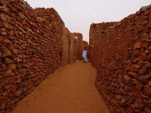 West Africa - (204)