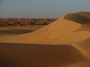 West Africa - (213)