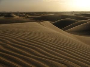 West Africa - (214)