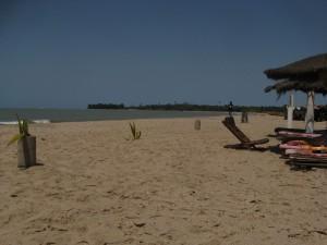 West Africa - (436)