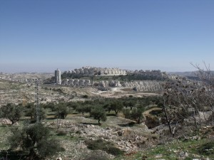 3. Palestine Highlights (38)