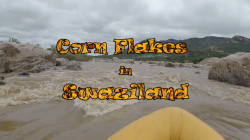 Corn Flakes in Swaziland - Screen Shot (3)